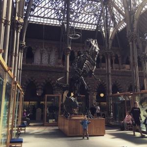 Tyrannosaurus Rex and T Minimus